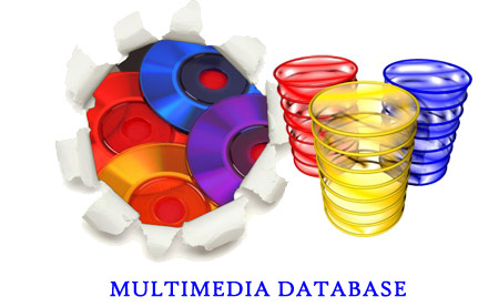 Multimedia-Database