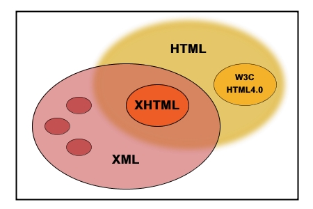 What is a XML Database? XML HTML